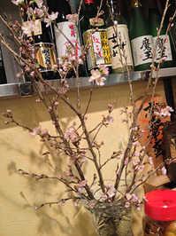 newmeigetsu13.jpg