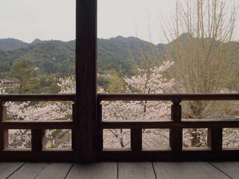 miyajima_08.JPG