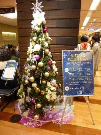 ベト クリスマス (5).JPG