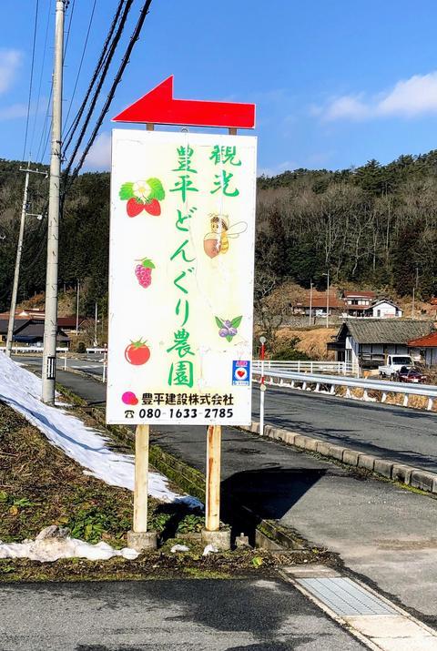 ichigo1.jpg