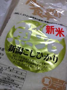 coaki20141019_08.jpg