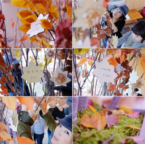 momiman-tree003.jpg