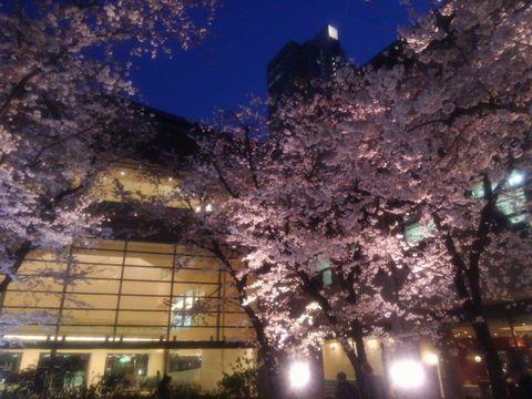 sakura_bijyutukan.jpg