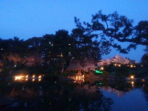 sakura_ike.jpg