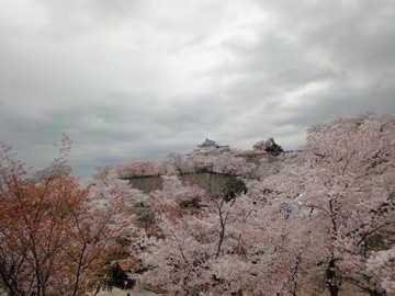 tsuyama01.jpg