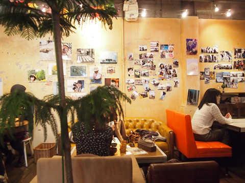yamaneko-cafe01.jpg
